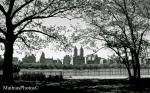 Central Park (the reservoir)