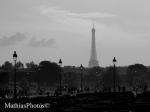 Dans les Tuileries