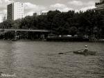 Aviron sur le Canal