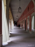 Munich - Hofgarten (Galerie)