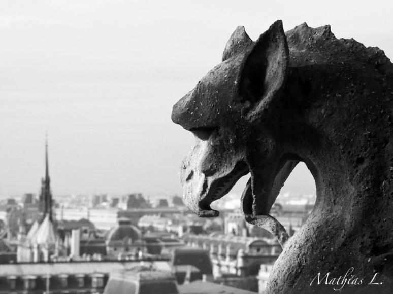 Gargouille Paris Notre-Dame