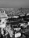Les toits de Notre Dame