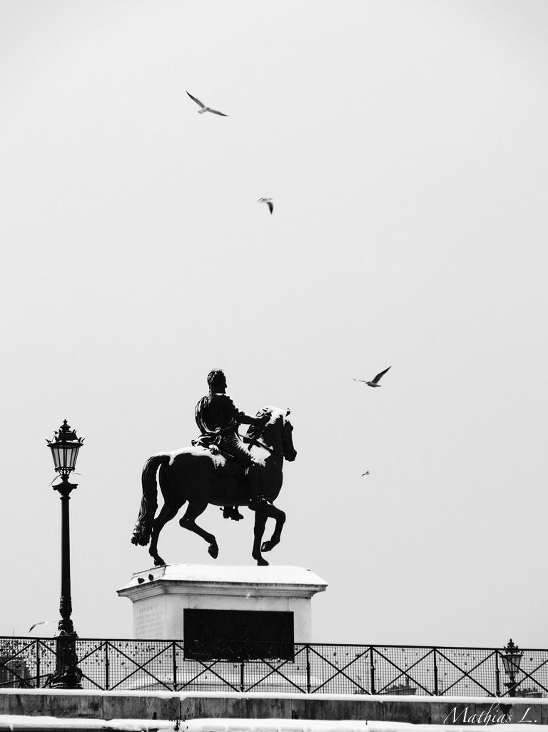Vol au-dessus d'un roi enneigé