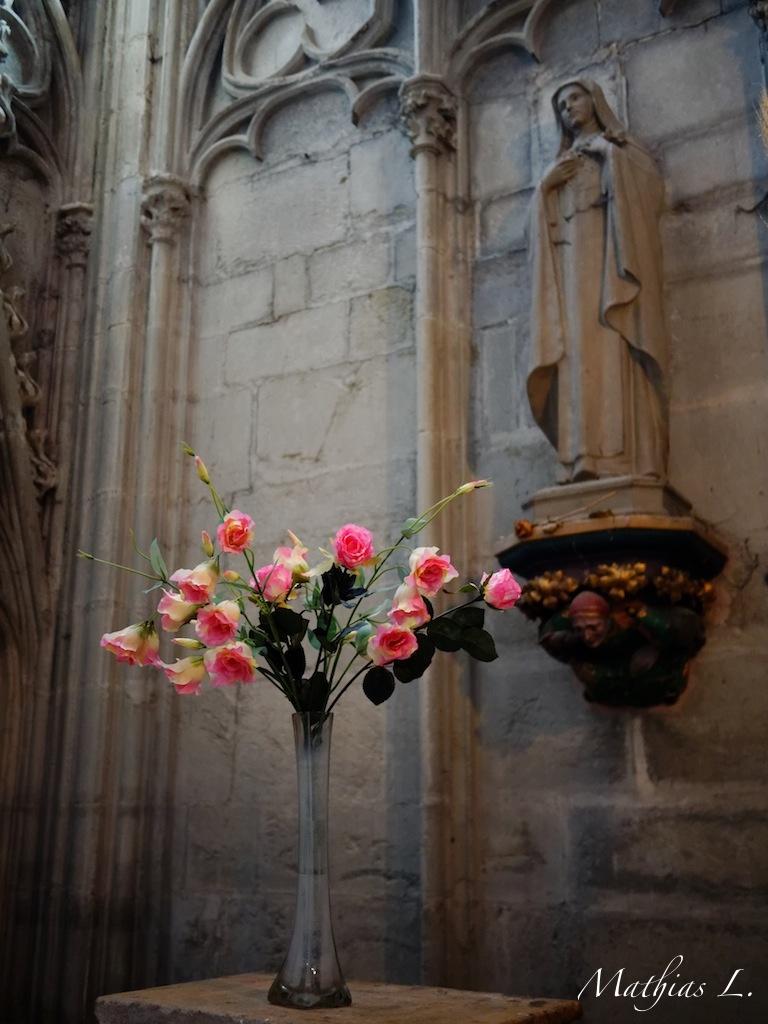 Rose à Marie