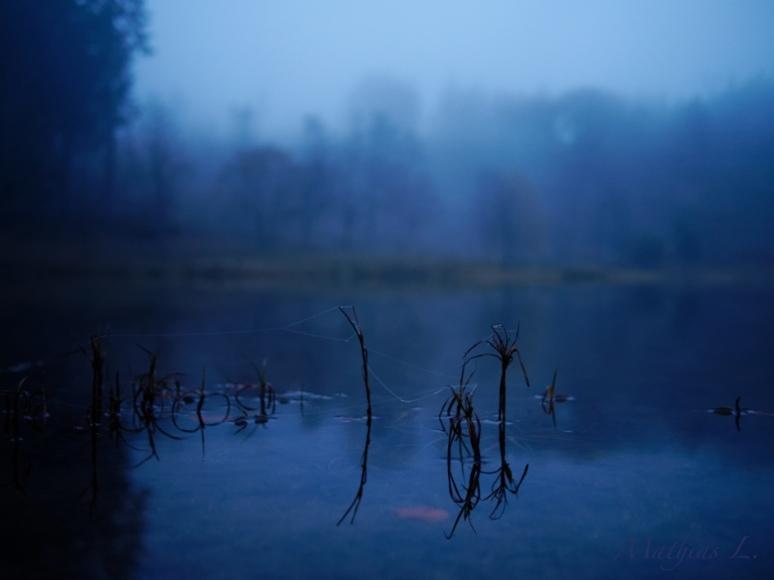 Brume - Crépuscule - le lac