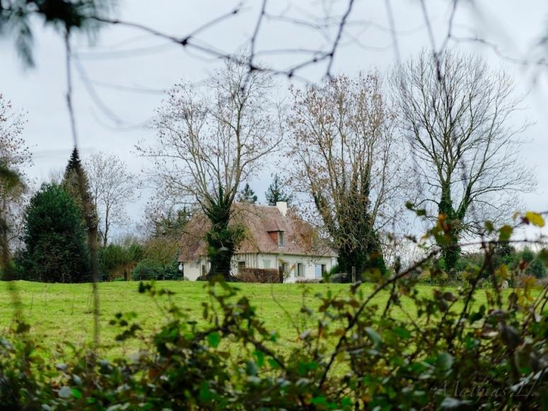 Vers Beaumont-en-Auge