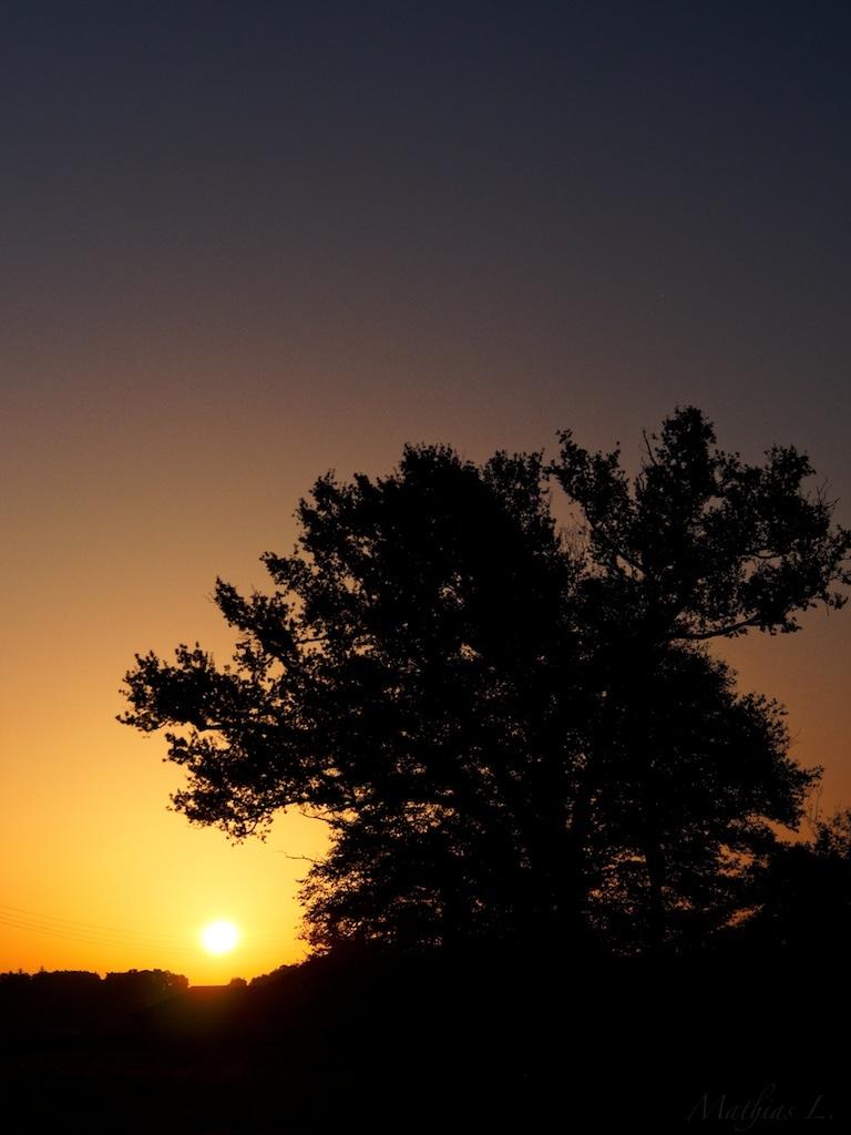 Lever de soleil sur Saint-Emilion