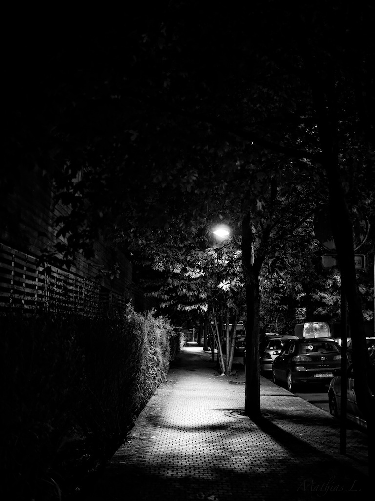 Lille la nuit (N&B)