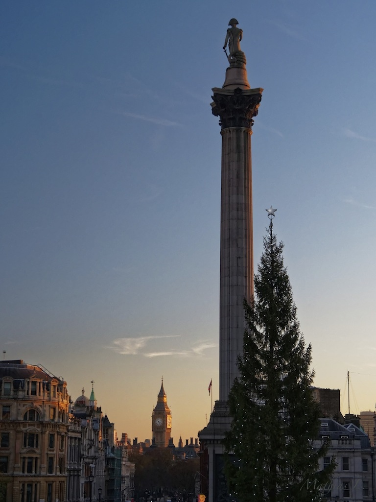 Trafalgar Square - Colonne Nelson