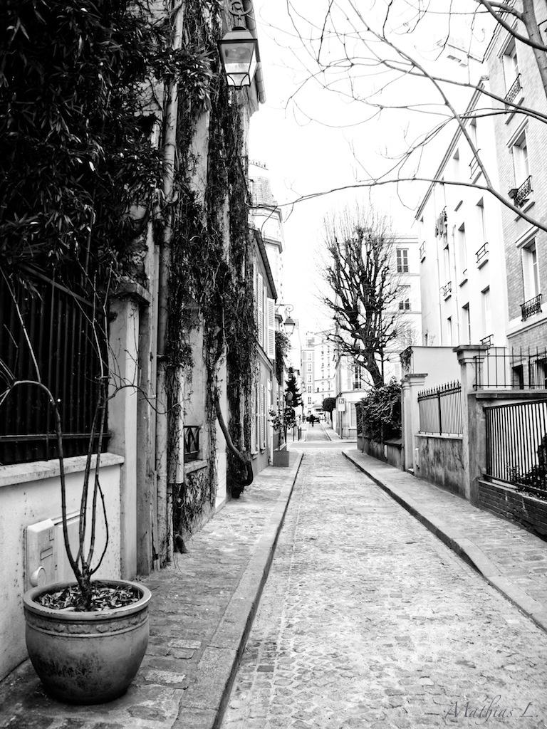 Quartier des Epinettes