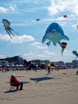 Rencontres internationales de cerfs-volants de Berck