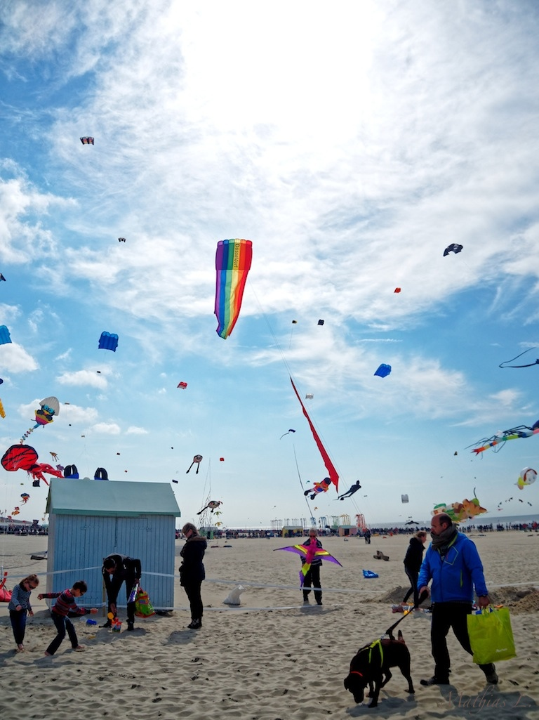 Rencontres internationales de cerfs-volants de Berck