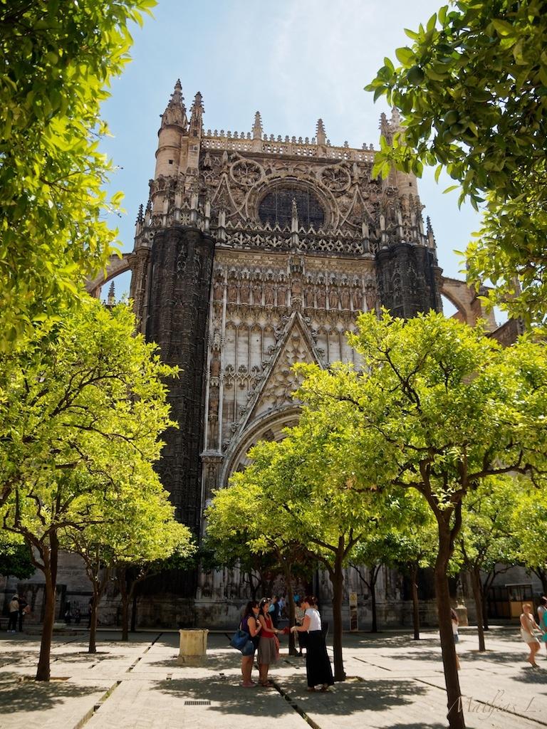 Seville - Cathédrale - Cours des Orangers
